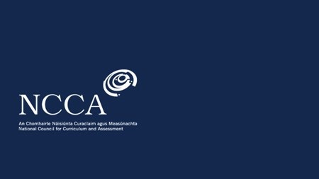 NCCA: Review of Relationships and Sexuality Education (RSE)